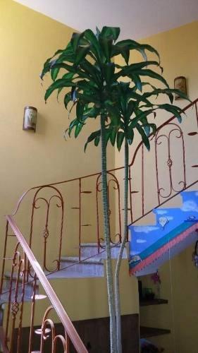 casa sola en santa maría ahuacatitlán / cuernavaca - ine-393-cs*