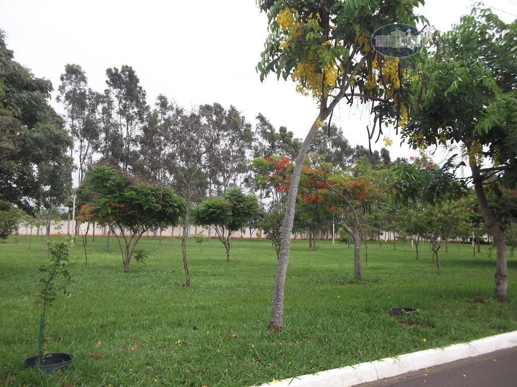 casa à venda, 325 m² por r$ 1.100.000,00 - aeroporto - araçatuba/sp - ca1179