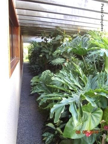 casa à venda em jardim eulina - ca121412