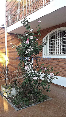 casa à venda em jardim proença - ca229476