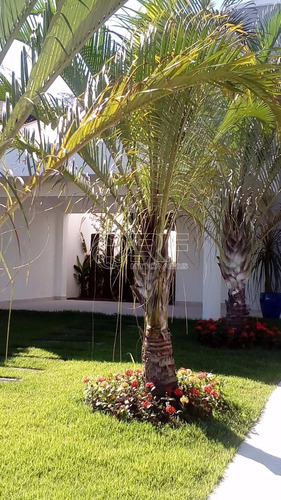 casa à venda em riviera de são lourenço - ca002435