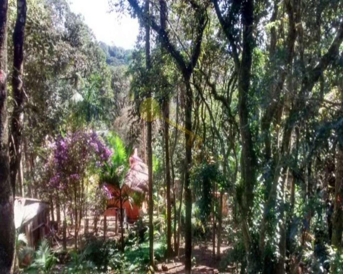 casa à venda na serra da cantareira. agende sua visita. - 1705 - 32145814