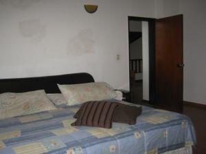 casa venta codflex 20-2376 ursula pichardo
