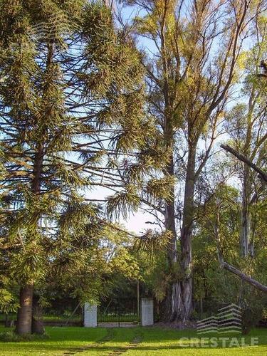 casa veta - funes, enorme parque forestado, 3 dormitorios, pileta.