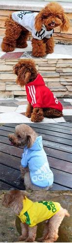 casaco cachorros casaco