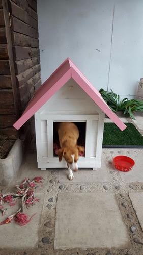 casas de perros calidad premium!!