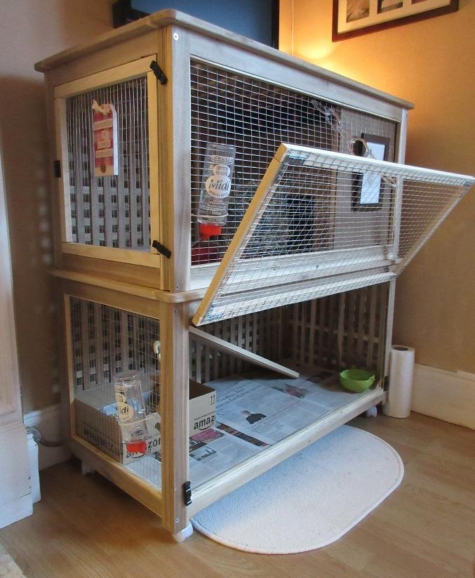 Casas Para Cobayos Gatos Perros Mascotas Parques Bs 86