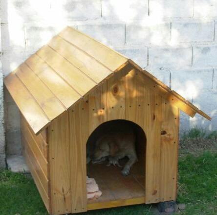 Casas para perros en madera totalmente lavables - Como hacer una casa para perro grande ...