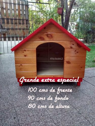 casas para perros   minicasitas