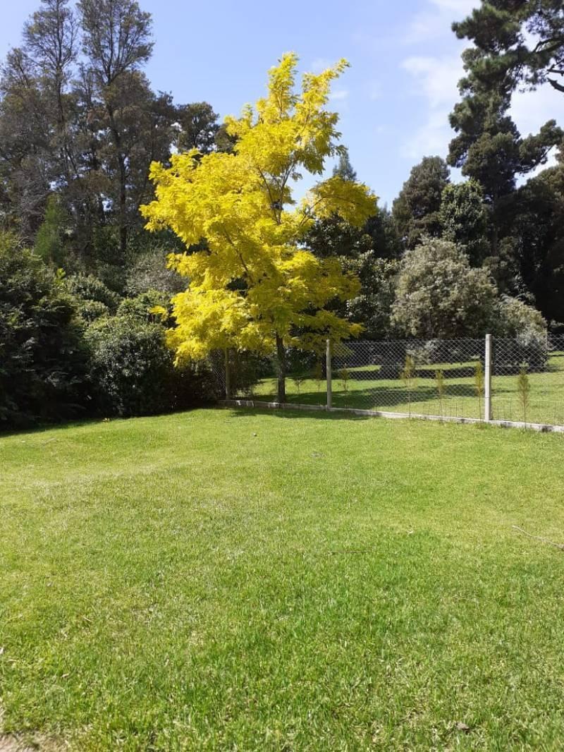 casas venta bosque peralta ramos