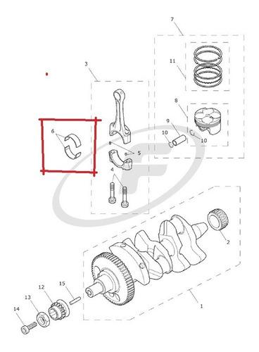 casca revestimento do rolamento de biela da triumph t1112002
