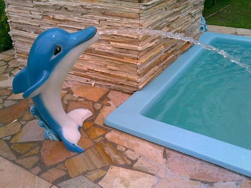 cascata golfinho em fibra