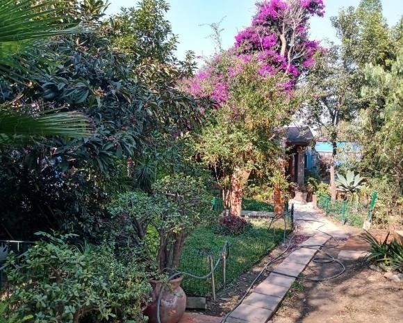casita con jardín común, mascotas, 2 recamaras,
