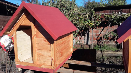 casitas para perros grandes ( tipo pastor)