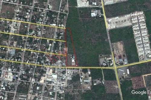 casona en dzitya mérida  casi dos hectáreas con cenote