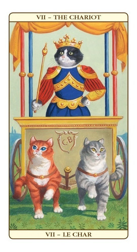 cat tarot, tarot