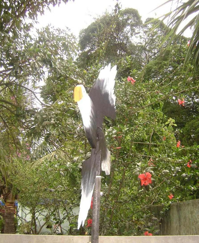 decoracao para jardins mercado livre: Para Chácaras, Sítios E Jardins – Gavião – R$ 105,00 em Mercado