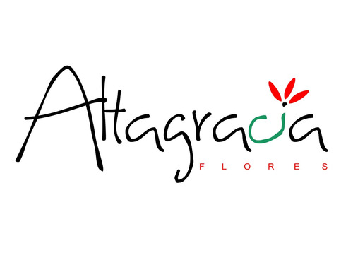 catalogo de arreglos florales_flores altagracia,c.a