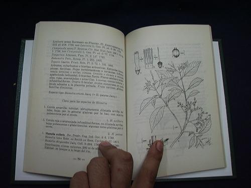catálogo ilustrado de las plantas de cundinamarca - c. garci