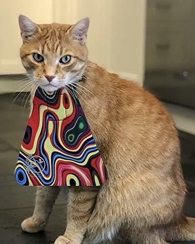 catbib - salva pajaros, protege gatos