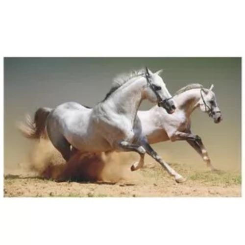 cavalos animais adesivo parede decorativo