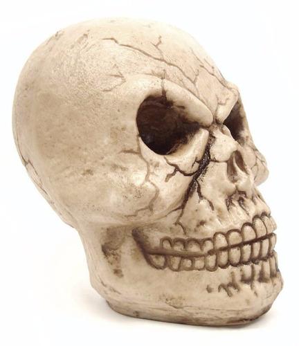 caveira grande gg crânio decorativo de resina 22cm.