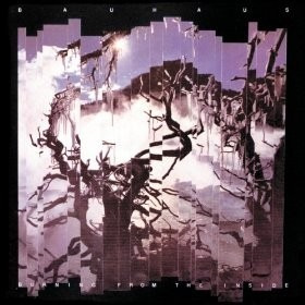 cd bauhaus burning from the inside out - usa
