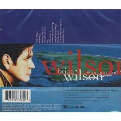 cd brian wilson - imagination (ex beach boys) original 1998