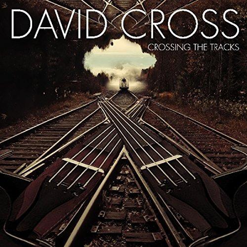 cd : david cross - crossing the tracks (cd)