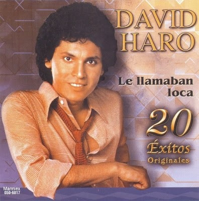 cd david haro la llamaban loca 20 exitos