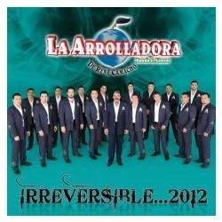 disco de la arrolladora irreversible