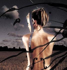 cd reflections - apocalyptica