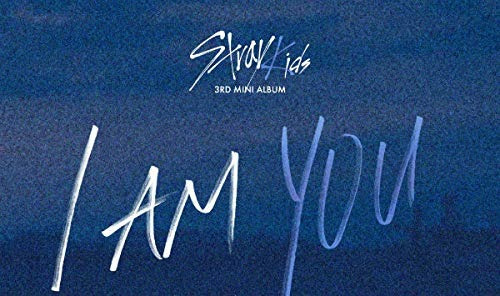 cd : stray kids - i am you (photo book, photos, asia import)