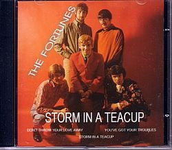 cd the fortunes - storm in a teacup (usado/otimo)