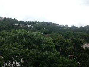 celeste c 17-7654 apartamentos en las acacias