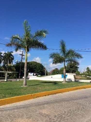 centrico local en renta en cancun
