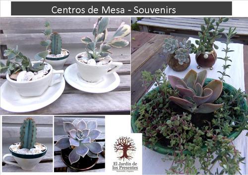 centros de mesa en cerámica y suculentas