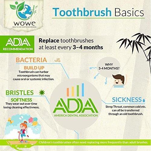 cepillo de dientes de bambú orgánico natural wowe kids indiv
