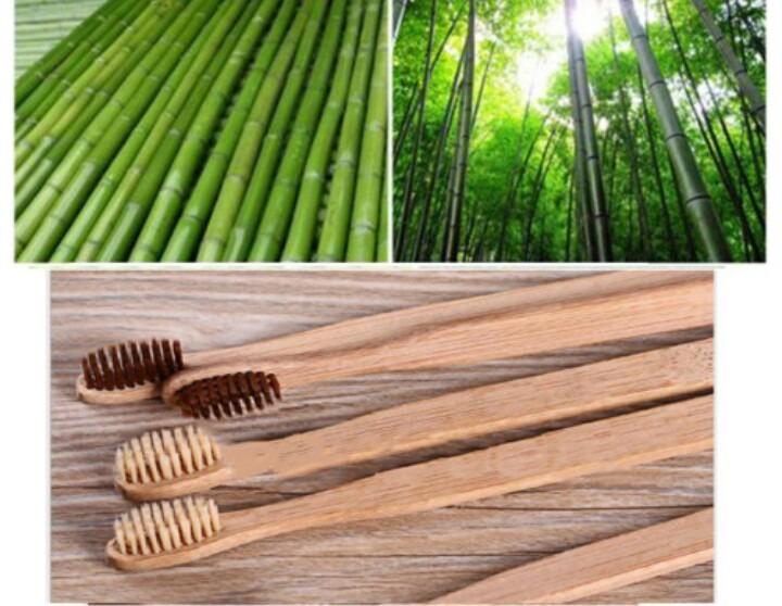 Cepillo De Dientes Ecológico De Bambu -   6.000 en Mercado Libre 75a404297e10