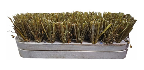 cepillo de madera parrillero sin cabo 15 cm