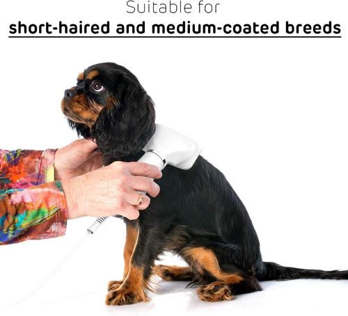 cepillo secador de pelo para mascotas 2 en 1