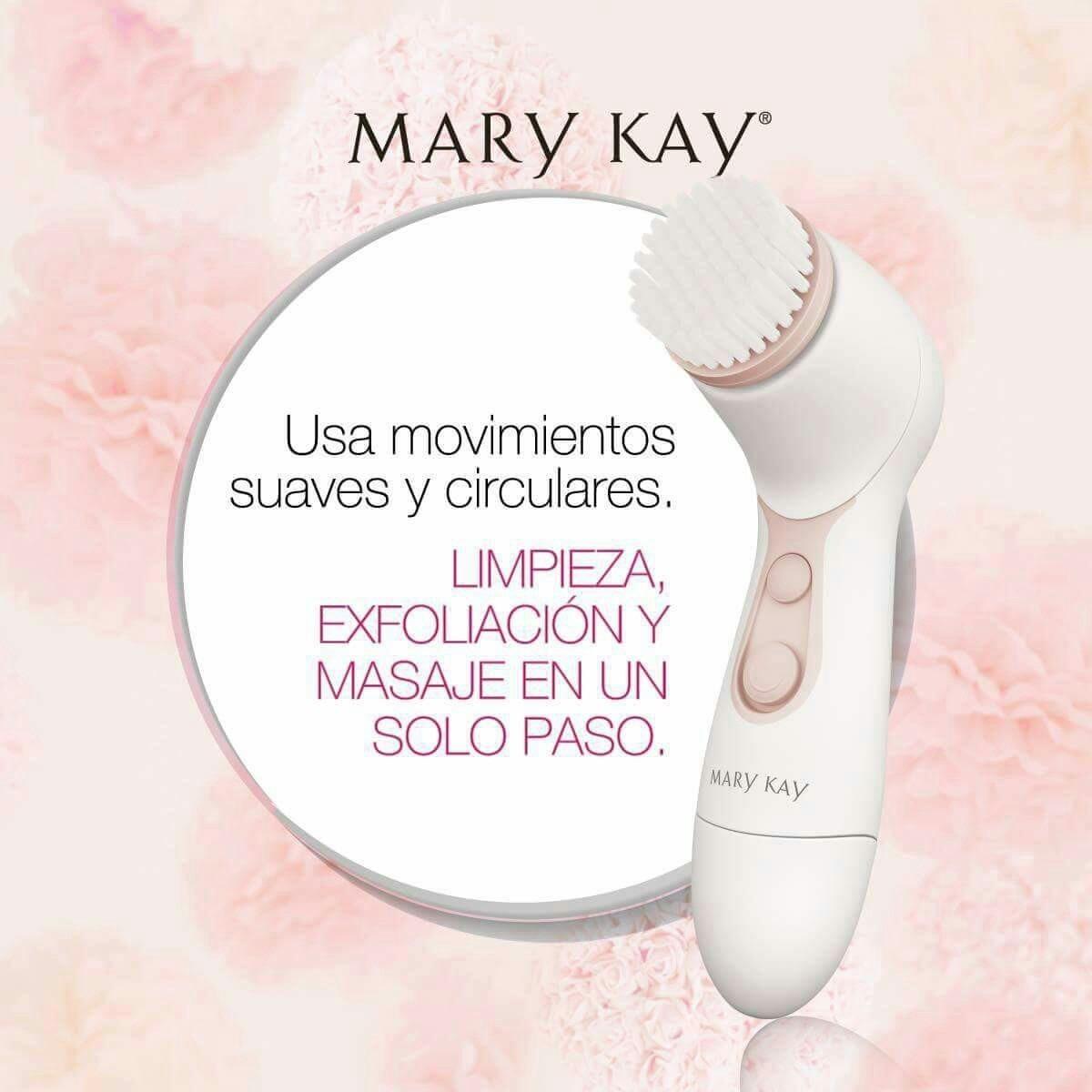 Cepillo Skinvigorate Mary Kay Y Botanical Gel Limpiador Bota