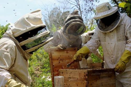 cera de abejas 100% natural