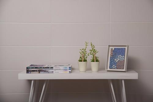 ceramica san lorenzo blanco brillante net 20x50 (español)