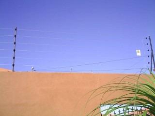 cercas eléctricas en costa rica