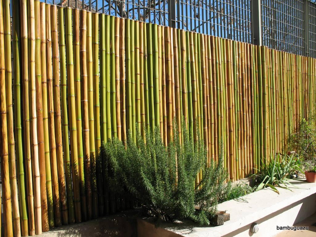cerco de caas bamb y tacuara paneles bamboo