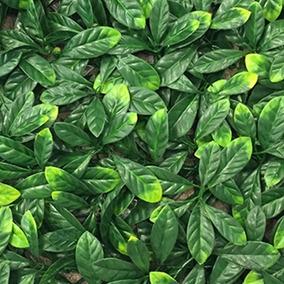 Lata Decorativa Grande Plantas Artificiales En Bsas