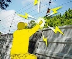 cercos eléctricos cámaras de vigilancia y seguridad cctv