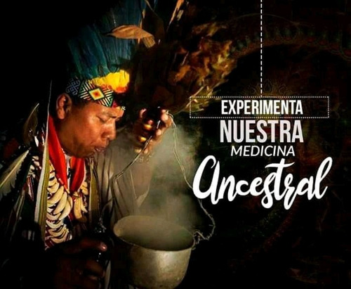 ceremonia de sanación y evolución con ayahuasca
