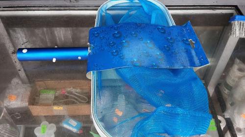 cernidera recogedor de hojas plástica para piscinas marca dg